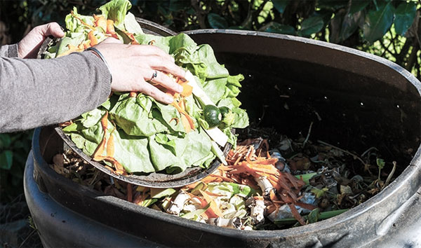 Reduce Food Waste By Composting